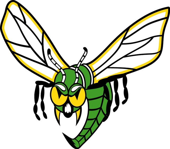 yellow hornets logo - photo #29
